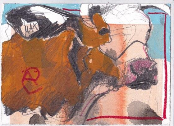 Kühe 15